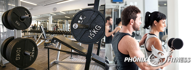 Personal Training im Phönix Fitness in Herdecke